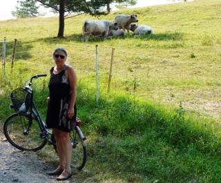 08-15; Ceska Skalice; Andreas seine Rinder 01