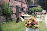 2011-06-09; Blumen vor HSM 4 04