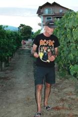 Frank im Wein