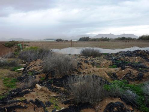 Institutioneller Müll aus der Landwirtschaft