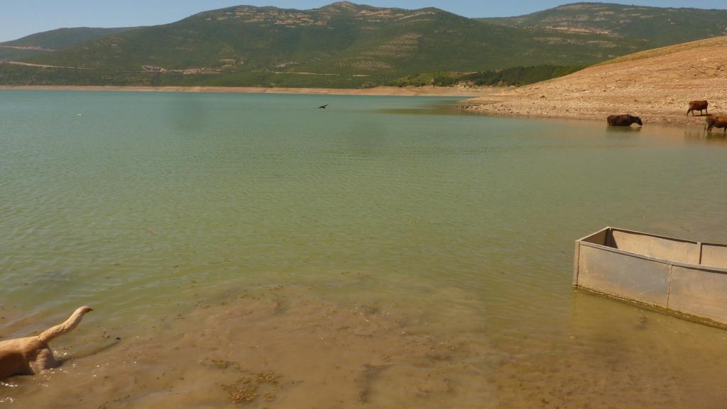 Kaum Wasser im See