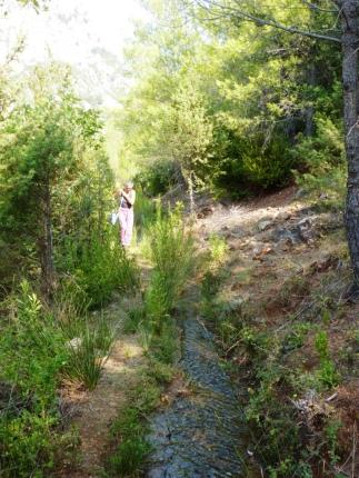 2017-09-02; Shkopet 01; Spaziergang im Berg 06