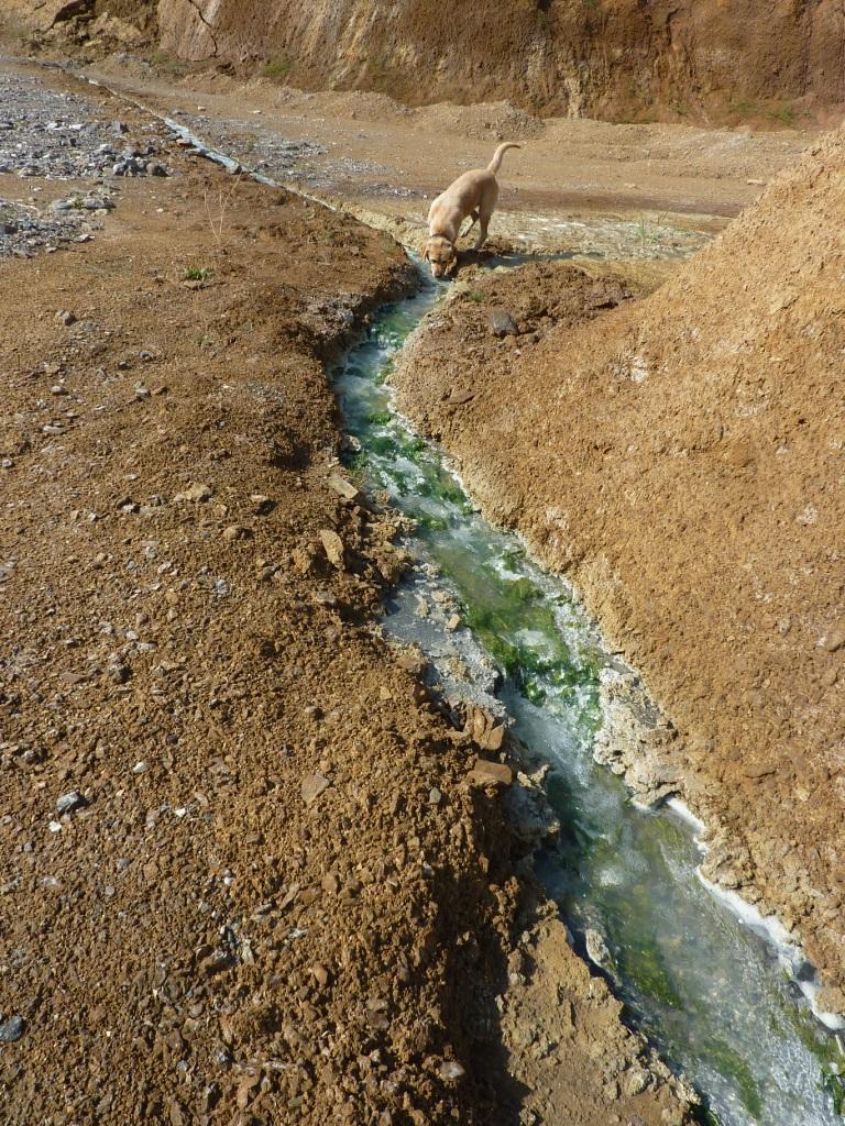 """irgeendwie das Wasser """"kanalisieren"""""""