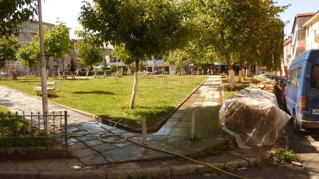 Parks in der zweiten Reihe