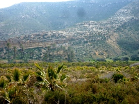 Der Blick ins grünende Tal