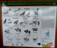 Naturschutzgebiet bei Tovacov