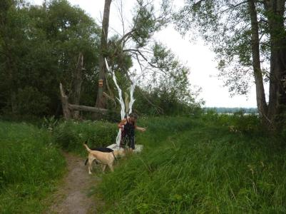 Kunst im Naturschutzgebiet bei Tovacov