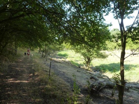 Der Rundwanderweg Bachra