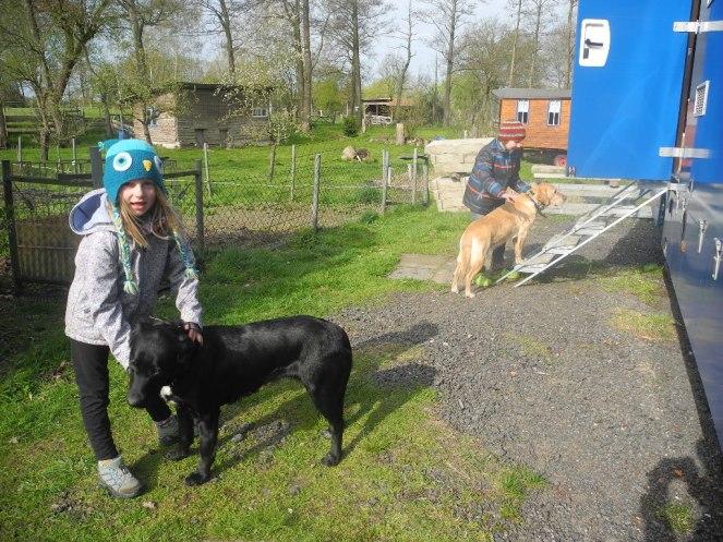 Unsere Hofhüter und Hundestreichler