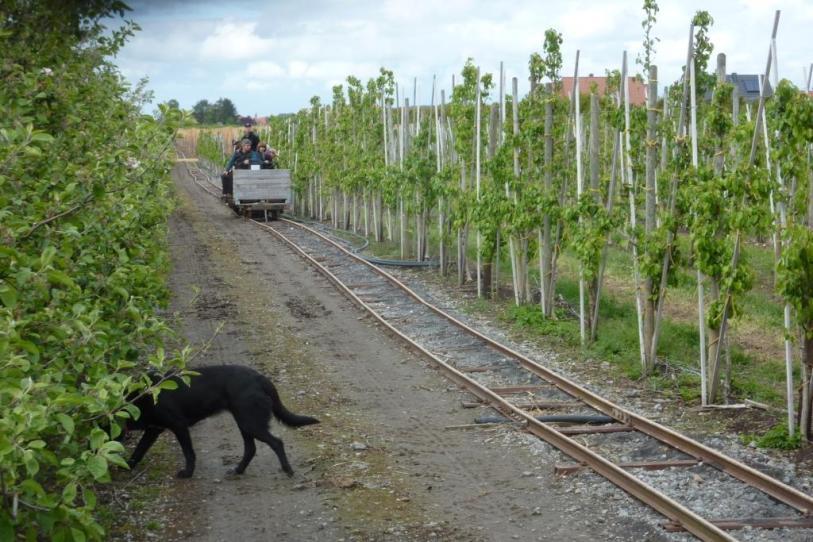 Peters Eisenbahn