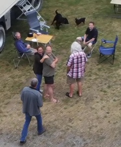 Hunde ohne Leine