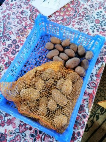 Kartoffeln aus dem eigenen Garten