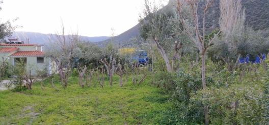Im Winter kann in Griechenland ein Campingplatz auch wie Freistehen sein.