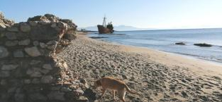 Ruinen auf Land und im Wasser